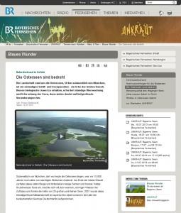Screenshot der Webseite des Bayerischen Fernsehens